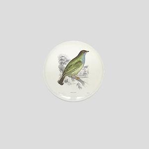 Honey Guide Bird Mini Button