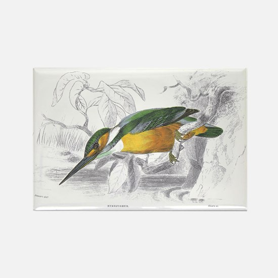 Kingfisher Bird Rectangle Magnet