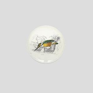Kingfisher Bird Mini Button