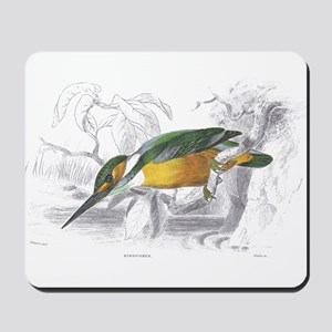 Kingfisher Bird Mousepad