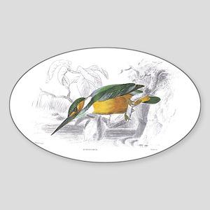 Kingfisher Bird Oval Sticker