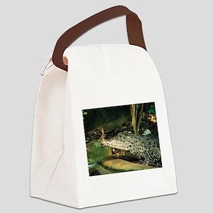 PH03346I Canvas Lunch Bag