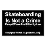skateboarding Sticker (Rectangle 10 pk)