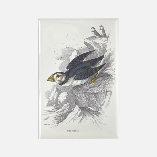 Puffin Bird Rectangle Magnet