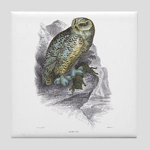 Snowy Owl Bird Tile Coaster