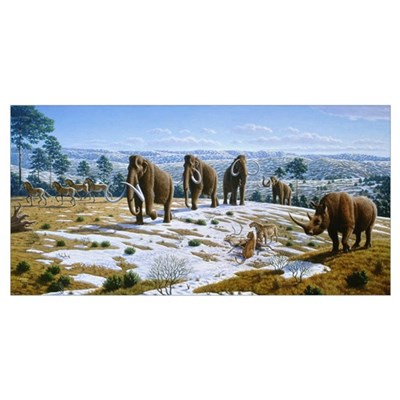 Mammals of the Pleistocene era Canvas Art
