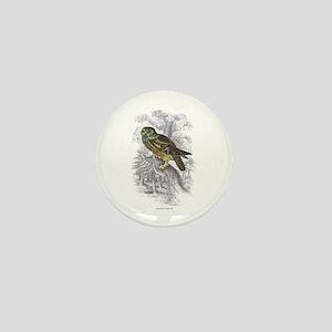 Night Owl Bird Mini Button