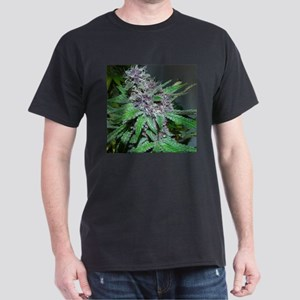Organic Purple Bud Dark T-Shirt