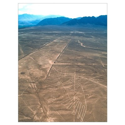 Nazca lines Canvas Art