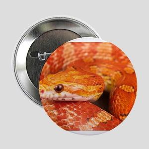 "Corn Snake 2.25"" Button"