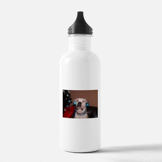 Bulldog Bauble Water Bottle
