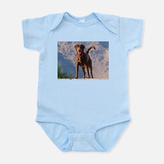 Lovable Chocolate Lab Infant Bodysuit