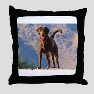Lovable Chocolate Lab Throw Pillow