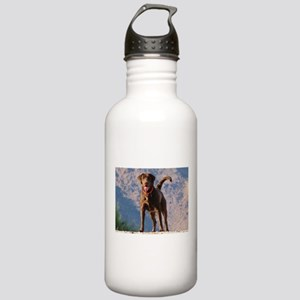Lovable Chocolate Lab Stainless Water Bottle 1.0L