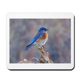 Bluebird happiness Mouse Pads
