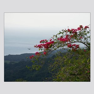Costa Rica fields Small Poster
