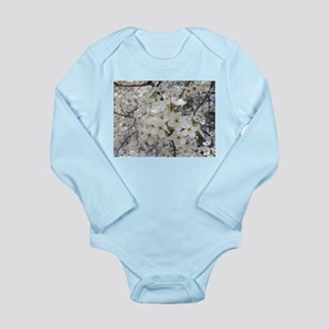 09-10 photos 829 Long Sleeve Infant Bodysuit