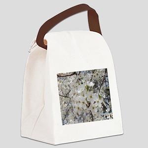 09-10 photos 829 Canvas Lunch Bag