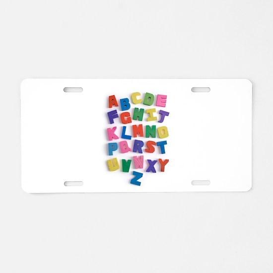 00439523.jpg Aluminum License Plate