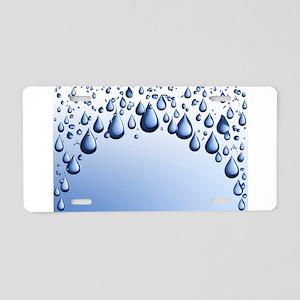 00438348 Aluminum License Plate