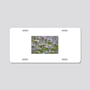 PH01211J Aluminum License Plate