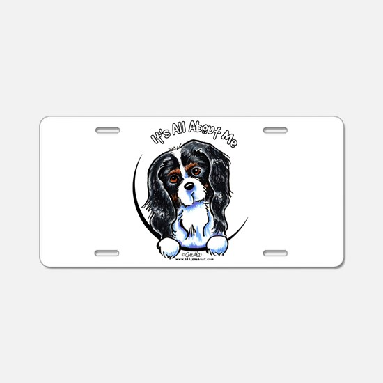 Tricolor CKCS IAAM Aluminum License Plate