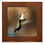 Hovering Hummingbird Framed Tile