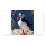 Atlantic Puffin Standing Sticker (Rectangle 50 pk)