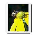 Pollination - Mousepad
