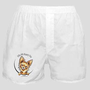 LH Chihuahua IAAM Boxer Shorts