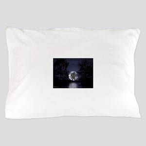 glbfrlarge2 Pillow Case
