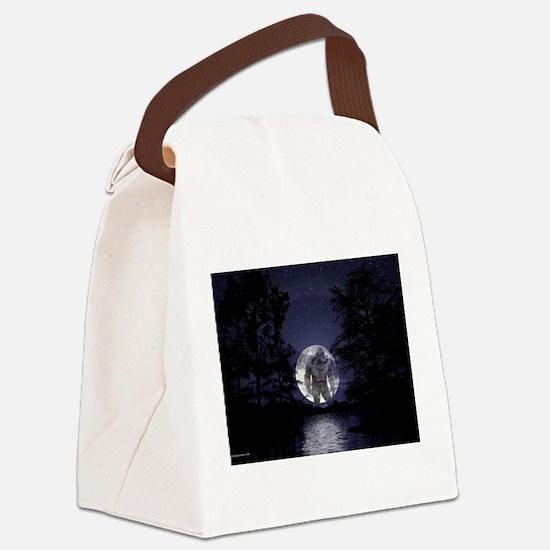 glbfrlarge2 Canvas Lunch Bag