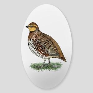 Bobwhite Quail Hen Sticker (Oval)