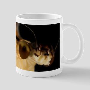 <i>Ephemera varia</i> (Yellow Drake) Mayfly Mug