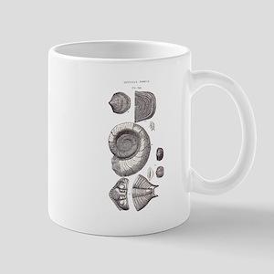 DEVONIAN FOSSILS Mug