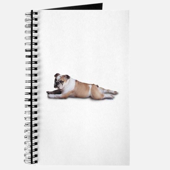 Lounging Bulldog Journal