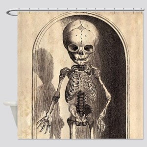 Skeletal Child Alcove Shower Curtain