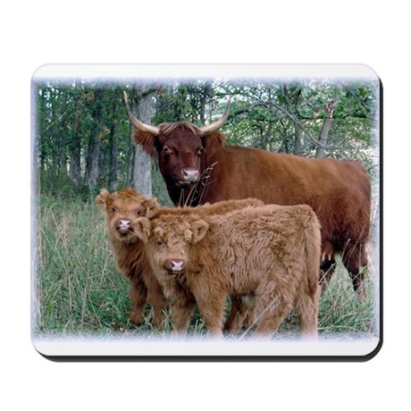 Two highland calves with mama cow Mousepad