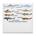 Sharks and More Sharks Montage Tile Coaster