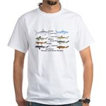 Sharks and More Sharks Montage White T-Shirt