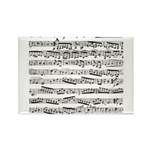 Music notes Rectangle Magnet (100 pack)