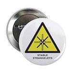 "Stable Strangelets 2.25"" Button"