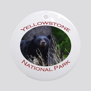 Yellowstone National Park...Black Bear Smile Ornam