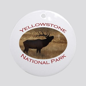 Yellowstone National Park...Elk Bugle and Steam Or