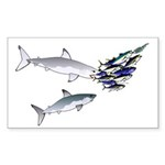 Two White Sharks ambush Tuna Sticker (Rectangle 50