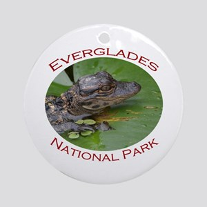Everglades National Park...Baby Alligator Ornament