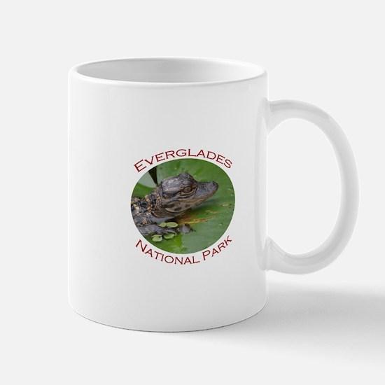 Everglades National Park...Baby Alligator Mug