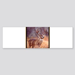 Wildlife Deer Buck Sticker (Bumper)