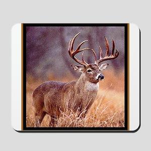Wildlife Deer Buck Mousepad