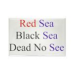 Israel Red Black Dead Seas Rectangle Magnet